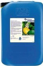 Spitzner Sauna-Aufguss Citrus Mint Wellness (10000 ml)