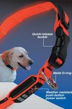 Nite Ize LED-Hundehalsband M
