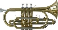 Steinbach SC-100