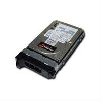 Micro Storage SCSI 300GB 15000RPM (sa300005i817)