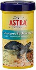 ASTRA Aquaria Gammarus Bachflohkrebse (250 ml)