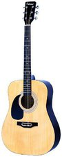 Falcon Guitars LFG100