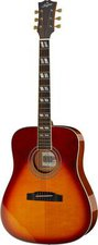 Stanford Guitars Deja Vu D-Bird
