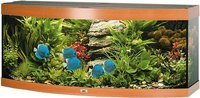 Juwel Aquarium Vision 450 - buche