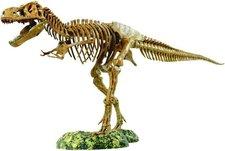 EDU-Toys Tyrannosaurus Rex Modell