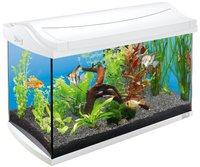 Tetra AquaArt Aquarium-Komplett-Set (61 x 33,5 x 42,7 cm) 60 L - weiß