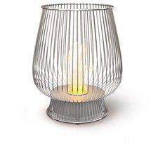 EcoSmart Bulb