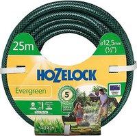 Hozelock Evergreen 3/4