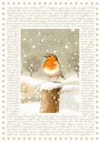 Coppenrath Marjoleins Winterwelt Adventskalender