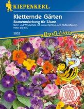 Kletternde Gärten Samen
