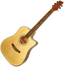 Pasadena Guitars AGC1