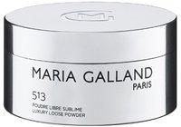 Maria Galland 513 Poudre Libre Sublime (35 g)
