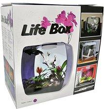 Lucky Reptile Life Box 30