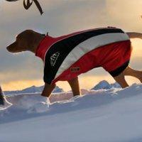 Wolters Skianzug Dogzwear (52 cm)