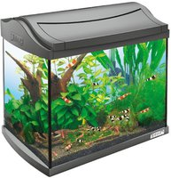 Tetra AquaArt Shrimps Komplett-Set (20 L)