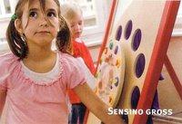 Nikitin Logo Verlag Sensino-Großversion Grundgerät