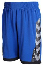 Hummel Technical X Shorts blau
