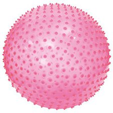Ludi Exercise Ball (Pink)