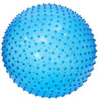 Ludi Exercise Ball (Blau)