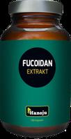 HANOJU Fucoidan Braunalgen Extrakt 600 mg Kapseln (180 Stk.)