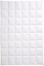 Centa-Star Moments Dauneneinziehdecke leicht  200x220cm