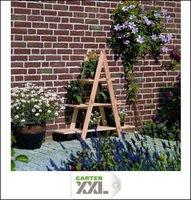 Promex Gartenideen Blumenleiter klein (353/8)