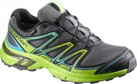 Salomon Wings Flyte 2 Gtx dark cloud/granny green/scuba blue