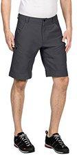 Vaude Men's Elbert Shorts II iron