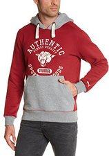 Puma Hooded Sweatshirt Herren