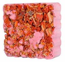 Trixie Nagestein klein mit Karottenwürfeln (75 g)