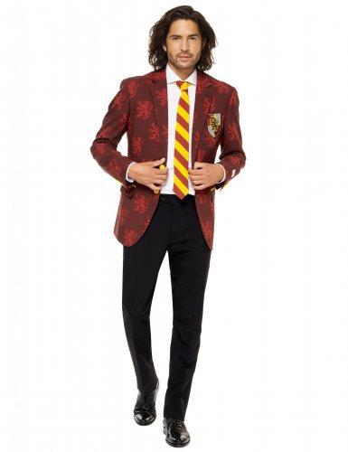 Harry Potter Kostüm