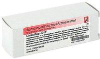 Dr. Reckeweg Cimicifuga D 12 Globuli (10 g)