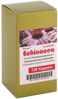 Aalborg-Pharma Echinacea Kapseln (120 Stk.)