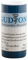 GudJons Silicea C 200 Einzeldosis Globuli (0,5 g)