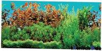 Trixie Aquarien-Rückwand, doppelt, Süßwasser, 120 x 50 cm