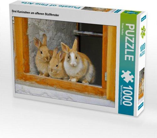 Kaninchen Außenstall