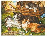 Schipper Malen nach Zahlen Katzenfamilie