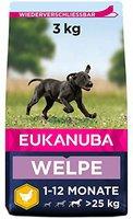 Eukanuba Puppy & Junior Large (3 kg)