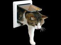 Trixie FreeCat de Luxe 4-Wege Tunnel
