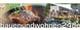 bauenundwohnen24de.com